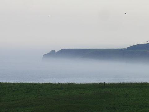 霧にかすむ半島