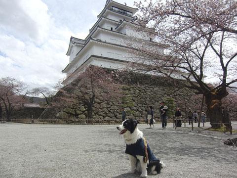 会津 鶴ヶ城
