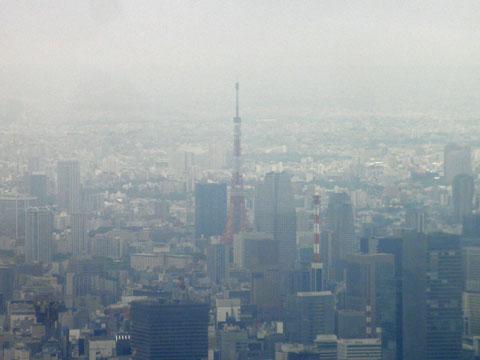 東京タワーが下に
