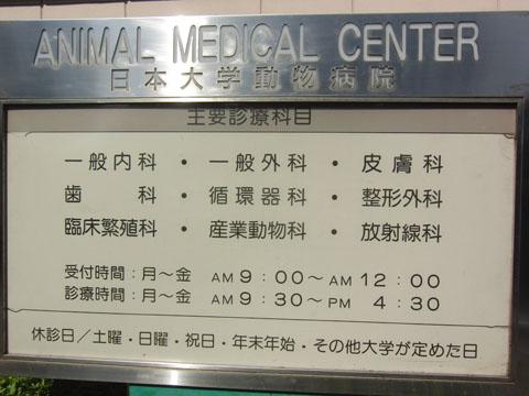人間の病院と同じ
