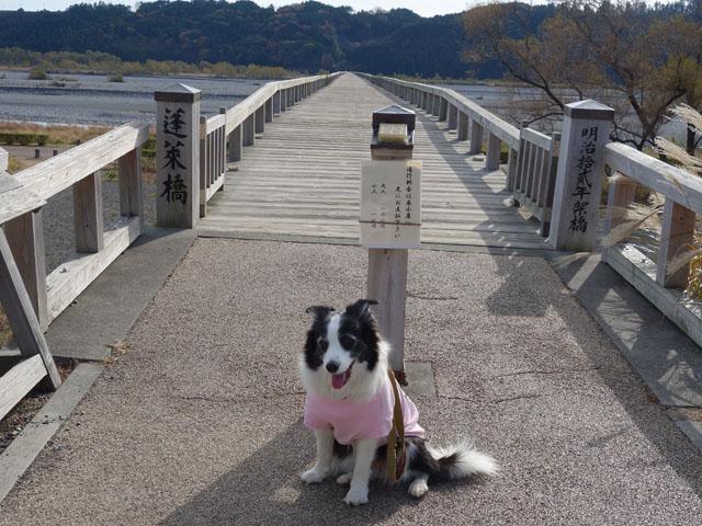 木造橋の蓬莱橋