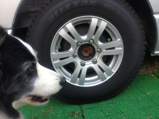 タイヤの見栄えが良くない