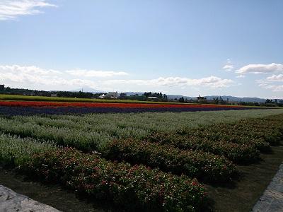 たいゆう緑化園5