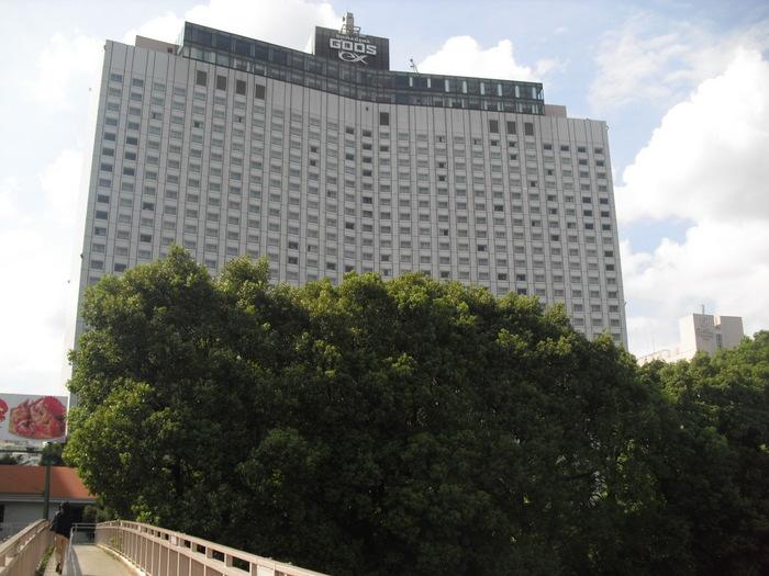 20120930 品川グース1