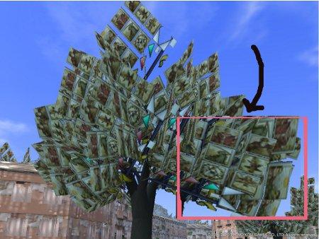 タロットの木