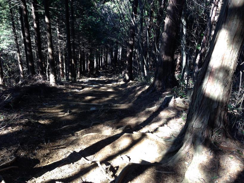 daimyouzin05.jpg