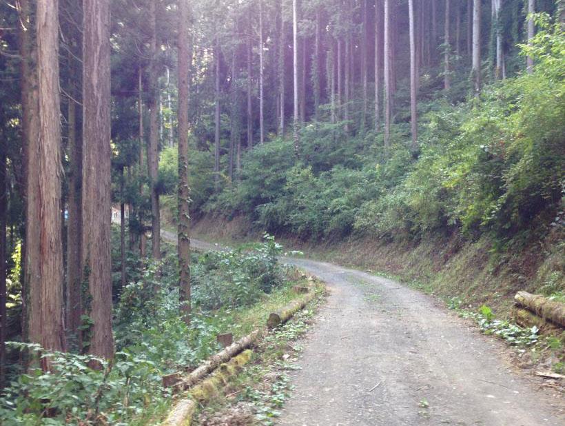 kamidaira51.jpg
