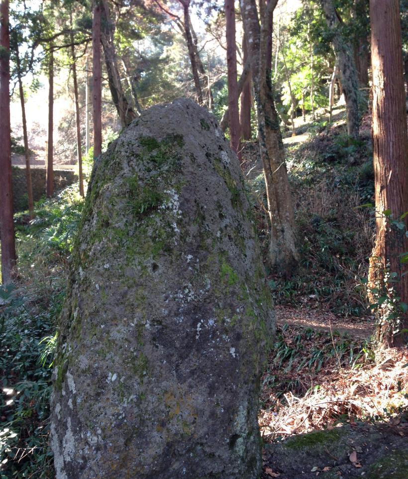 kenkyozi33.jpg