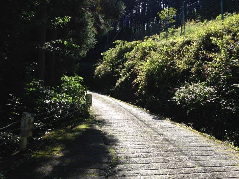 nakanodairaminamisawa05.jpg