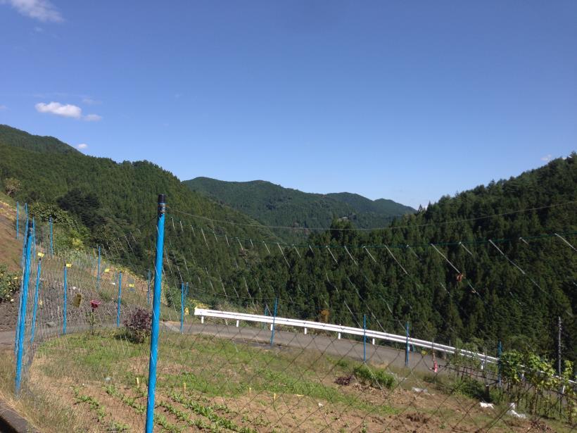 nakanodairaminamisawa20.jpg