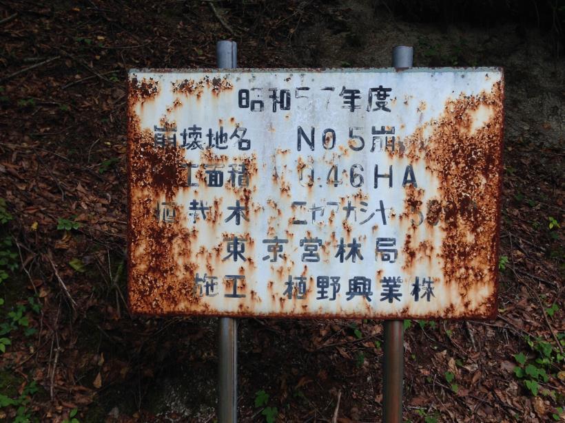 nisizawakidousaraba02.jpg