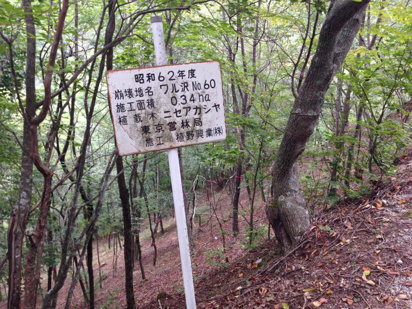 nisizawakidousaraba12.jpg
