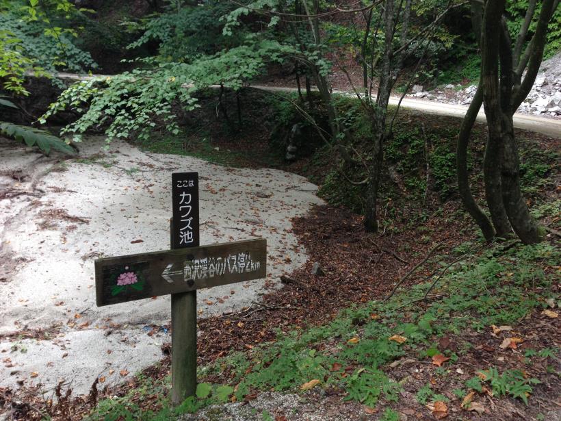 nisizawakidousaraba19.jpg