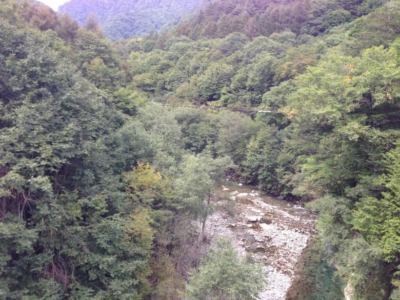 nisizawakidousaraba36.jpg