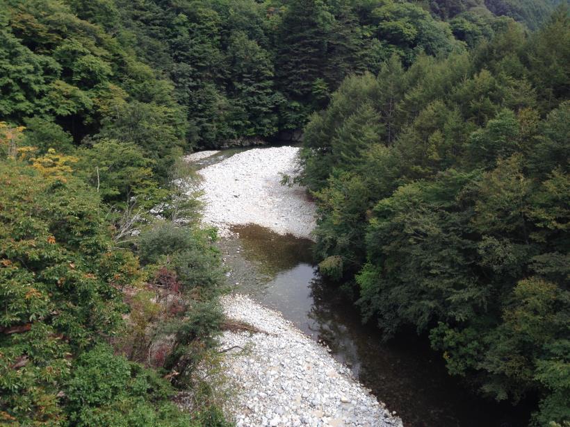 nisizawakidousaraba37.jpg