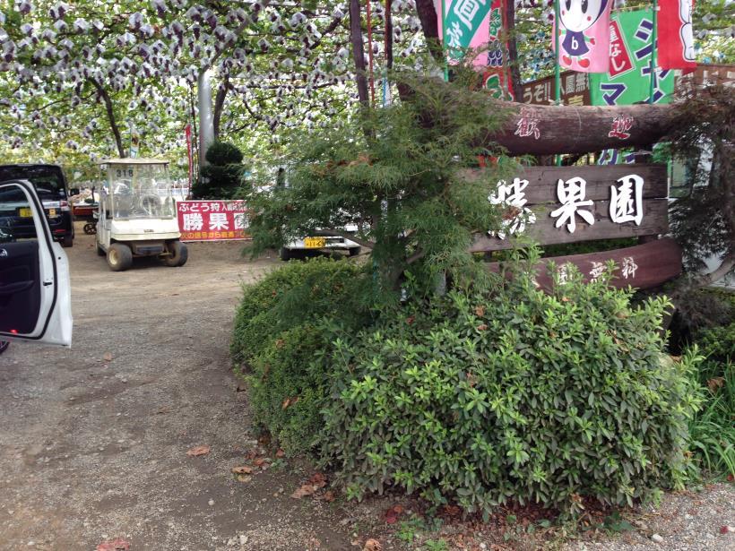 nisizawakidousaraba42.jpg