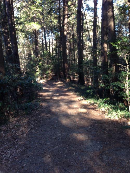 takiyamakokaido04.jpg