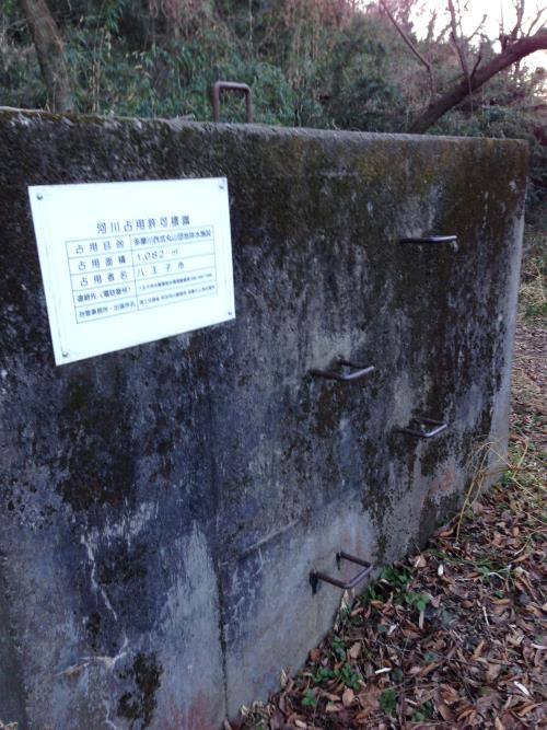tamagawaugan19.jpg
