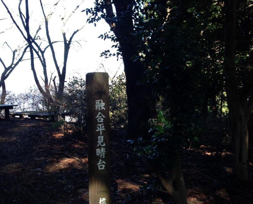 yugodaira24.jpg