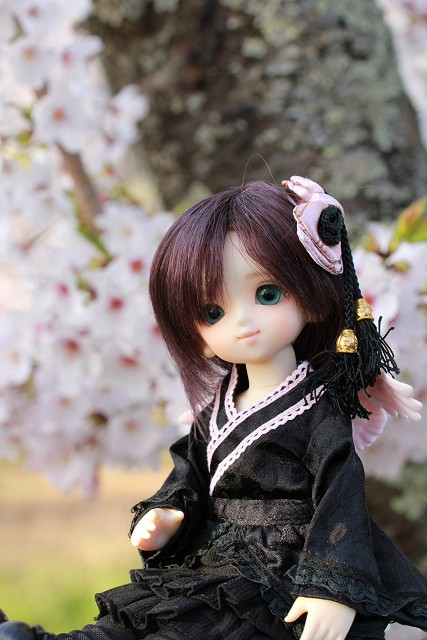 雪姫001