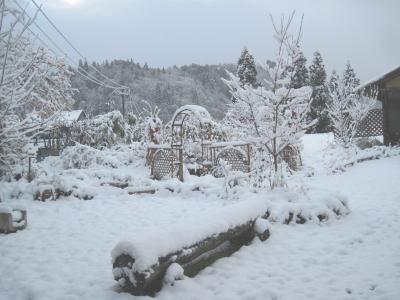 2011-12-10blog.jpg
