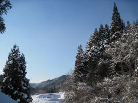 2011-12-24.jpg