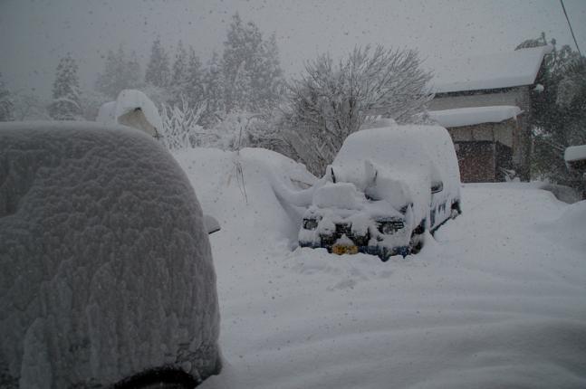 2012-12-09大雪