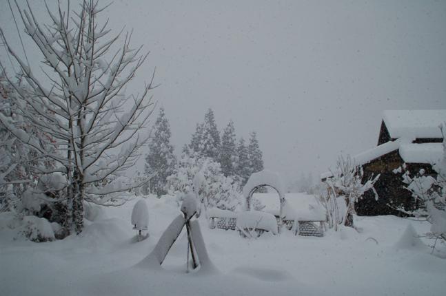 2012-12-09大雪 (3)