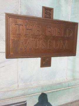 フィールド博物館 銅版