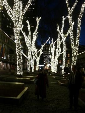 ボストン 夜2