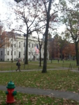 ハーバート 最終日1