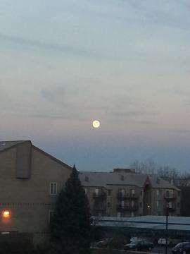 ミシガンの月
