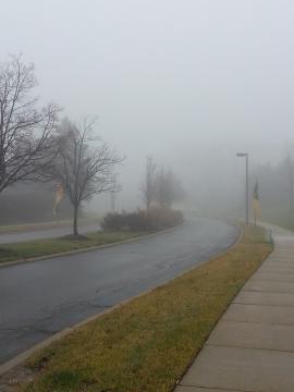 朝の霧景色