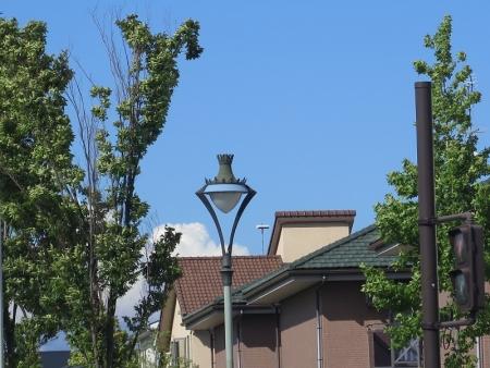 浜松 街灯