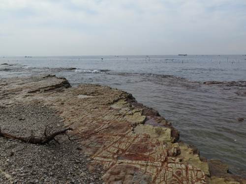 愛知 海岸