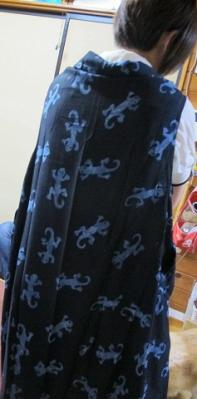 トッケイの服