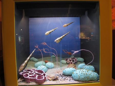 海洋堂フィギュアミュージアム 古生代の生き物