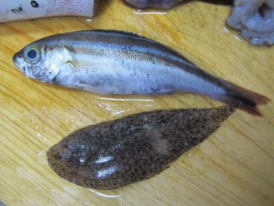 新鮮な小魚