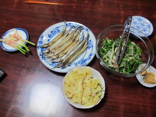 サヨリの一夜干し、お刺身サラダ、たくあん、新ショウガ