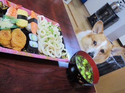 うどんと寿司、ネギ坊主とタラの芽の味噌汁