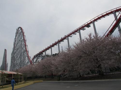 桜とスチールドラゴン
