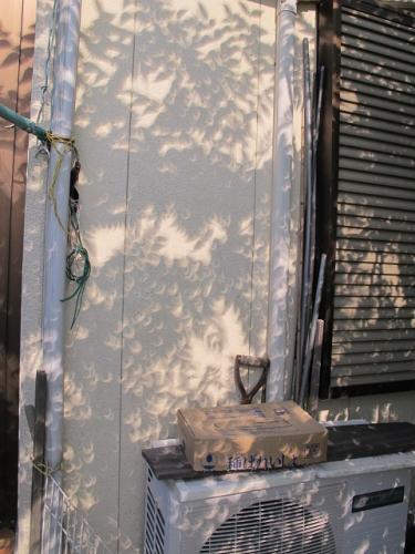 2012年5月21日AM7時34分木漏れ日