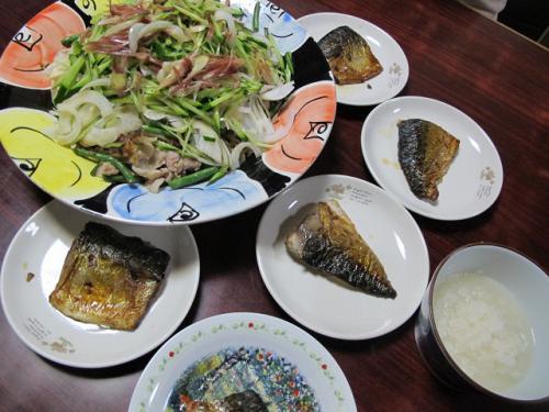 塩サバ、大根おろし、豚肉といんげん炒めスライス野菜のせ