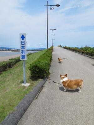 愛知 日本列島