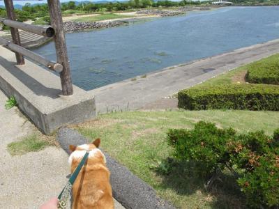 日本列島のエド