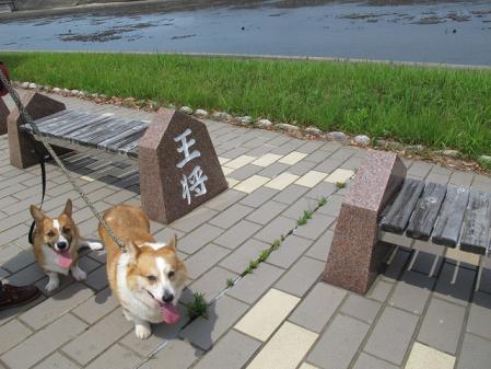 日本列島 山形 王将と2コギ