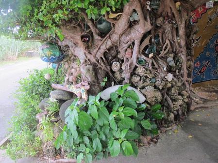 モンパの木のガジュマル
