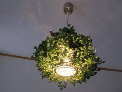 玄関の電灯