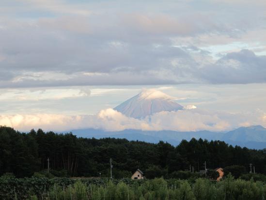 明野から富士山