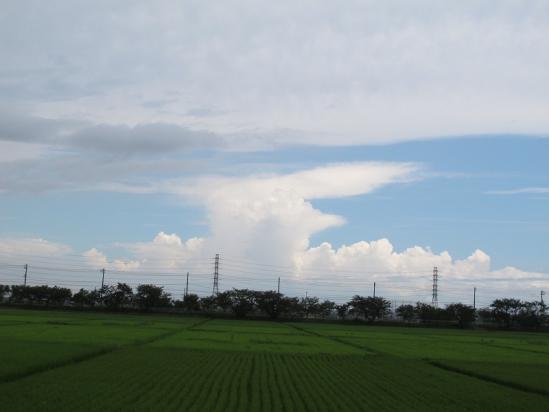 田んぼと雲